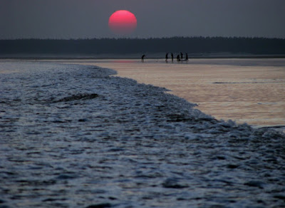 beach in digha