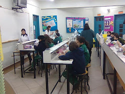 Laboratorio Ciencias Fisica Quimica