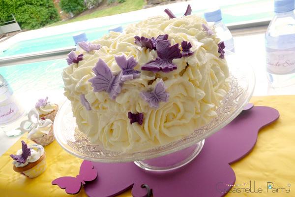 gâteau papillon / butterfly cake