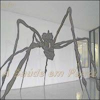 Acidentes com animais peçonhentos - Aranha.