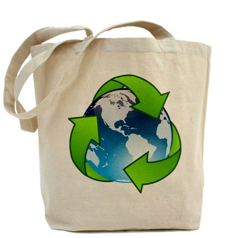 Eco-Friendly Grocery Bag