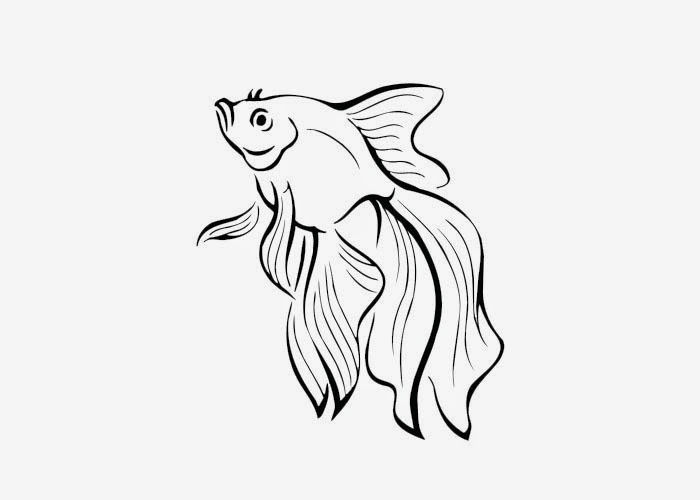 coloring pages of rainbow fish - photo#21