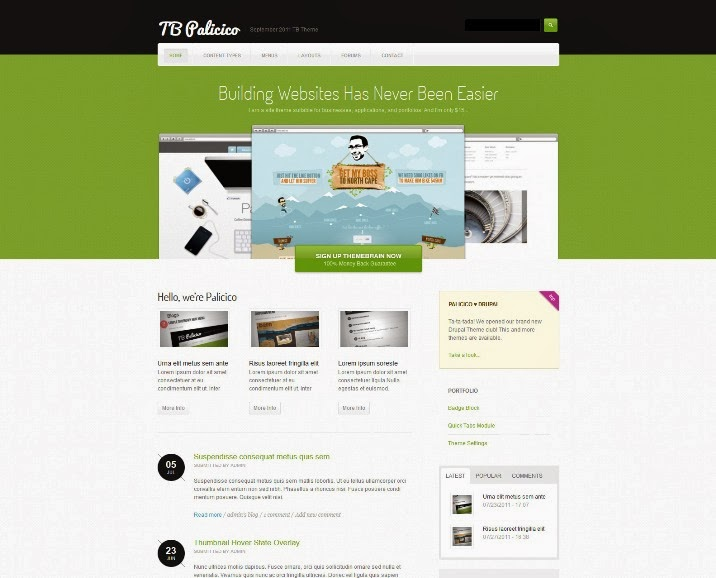 TB Palicico Drupal Theme for Business