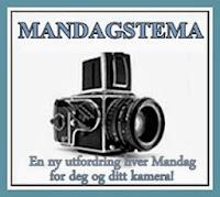 http://helenesblogadresseat.blogspot.se/2013/11/mandagstema-99.html