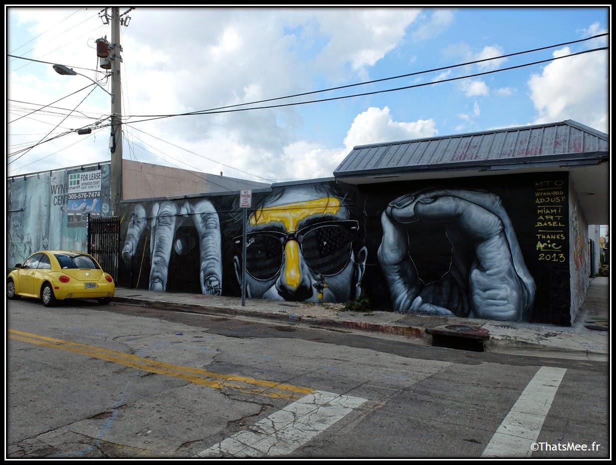 Wynwood art district street art Aric Miami, Miami Art Basel 2013