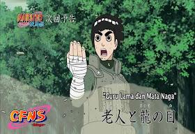 Naruto Shippuden Episode 312