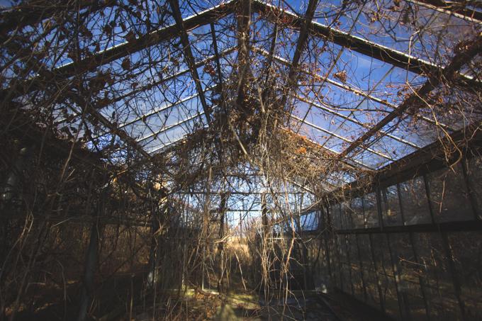 Ohio, Abandoned, Greenhouse