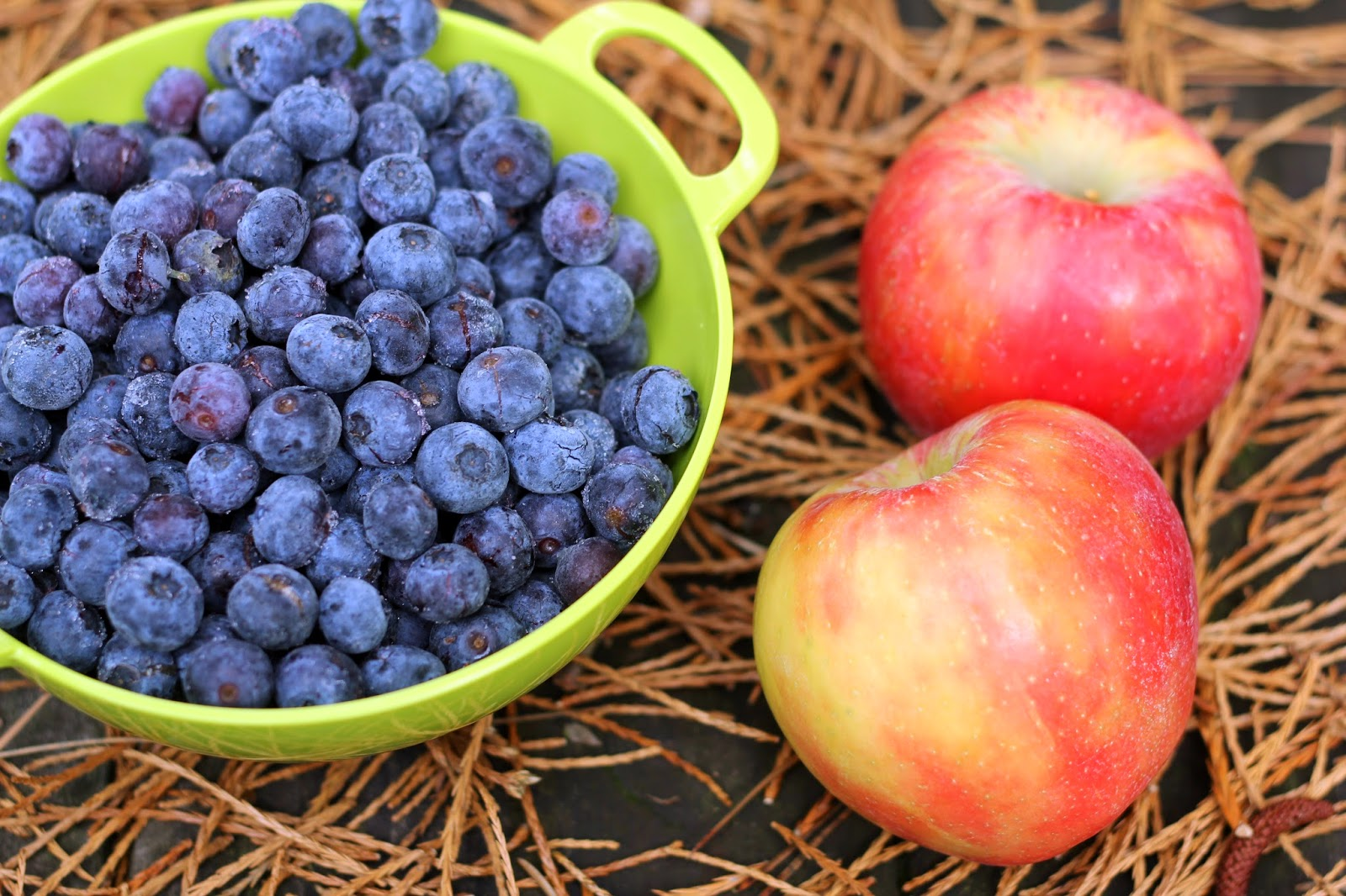 Image result for blueberry and apple