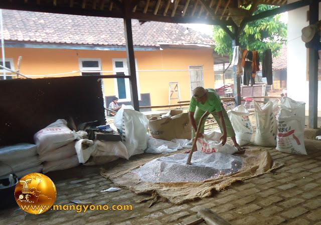 Foto : Mang Yanto sedang memasukan pupuk yang sudah dicampur kedalam karung