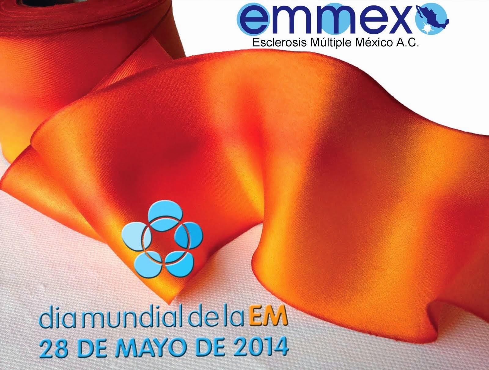 Día Mundial de la EM 2014