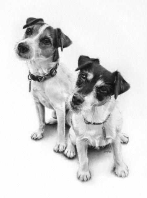 Mejores Dibujos a Lapiz Dibujos Perros el Mejor Amigo