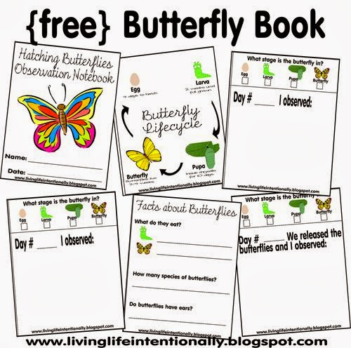 http://www.123homeschool4me.com/2012/08/hatching-butterflies-with-free-printable.html?m=1