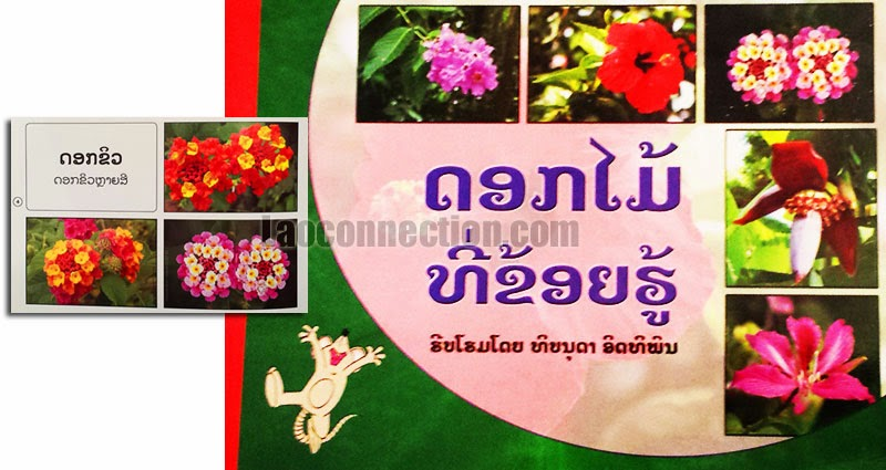 Lao book review:  Flowers I know - written in Lao