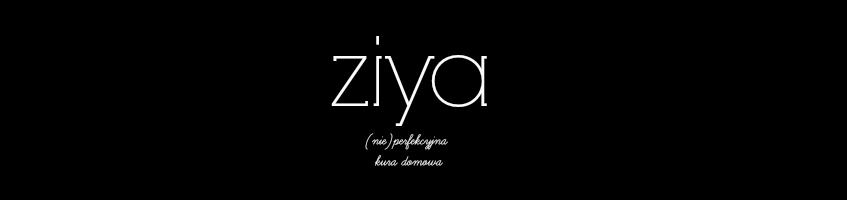 ZIYA DIY