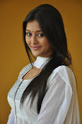 Pooja Jhaveri new Glam photo shoot-thumbnail-19