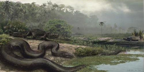Titanoboa - No rastro da maior cobra de todos os tempos