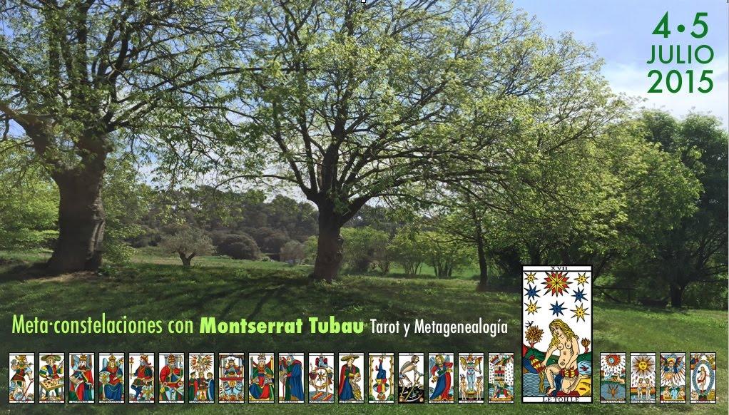 4 y 5 julio 2015 Meta·Constelaciones ● TALLER de Tarot y Metagenealogía en Acción