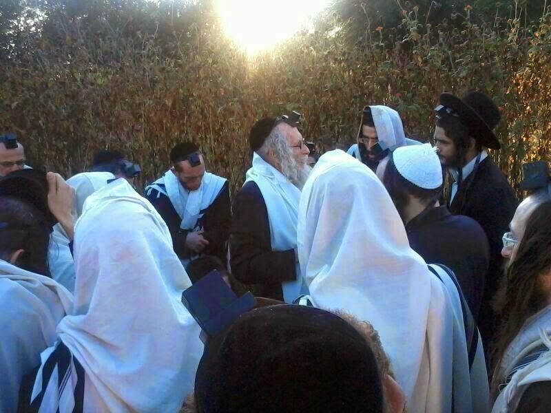 Rabbi Eliezer Berland הרב אליעזר ברלנד