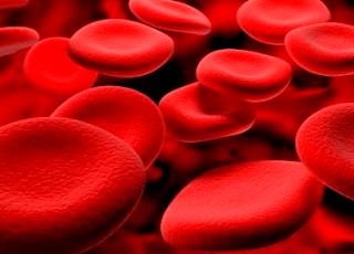 Pengertian, Komponen, dan Fungsi Darah