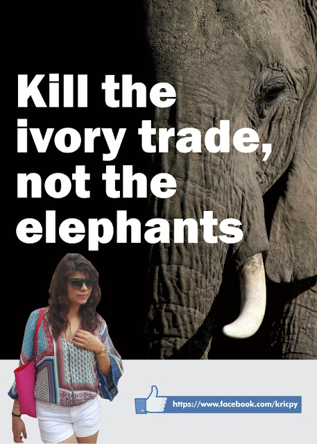Kricpy - Save Elephant