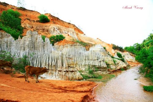 Discovering the unique beauty of Tien stream in Mui Ne