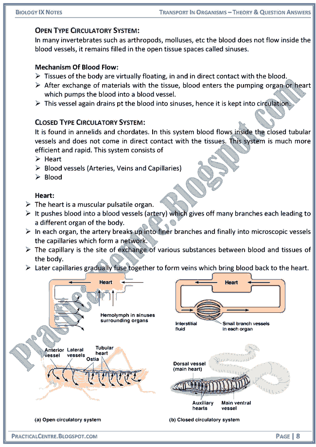 transport-in-organisms-theory-and-question-answers-biology-ix