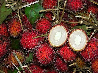 11 fotografías de frutas exóticas (vista exterior e interior)