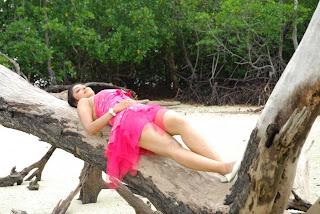 Payal Ghosh beach side spicy stills in pink