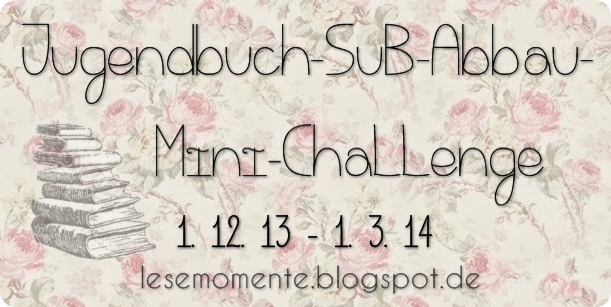 http://lesemomente.blogspot.de/2013/11/ankundigung-3-monate-sub-abbau.html