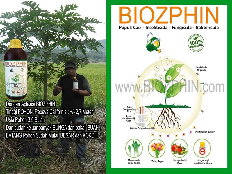 Pupuk Organik Cair Biozphin Dengan Nutrisi Tanah Lengkap Untuk Mempercepat Pertumbuhan Tanaman