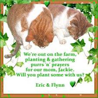 Purrrs For Eric & Flynn's Mum