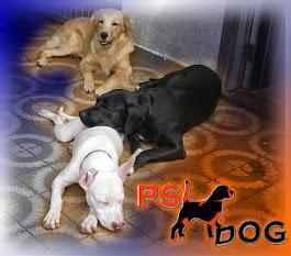 PsiDog Hotel - Escola