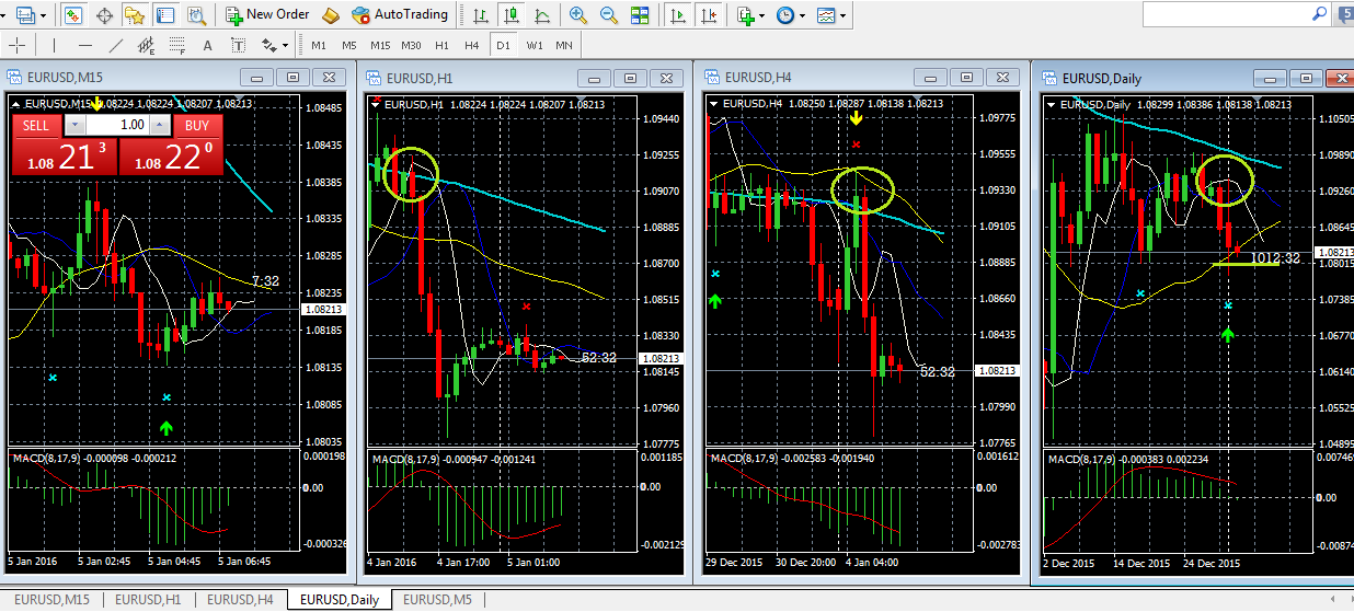 Trading forex bisa kaya