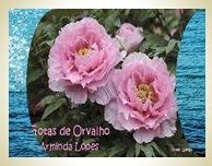 Visite meu Blogue Gotas de Orvalho