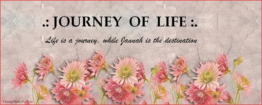 .:Journey of Life:.