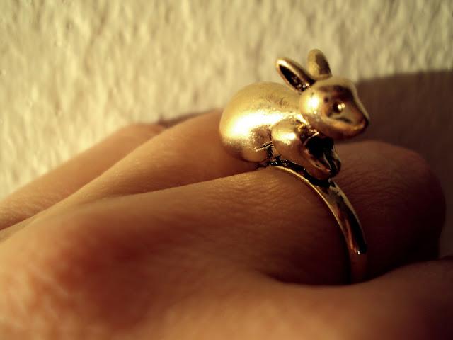 .little rabbit