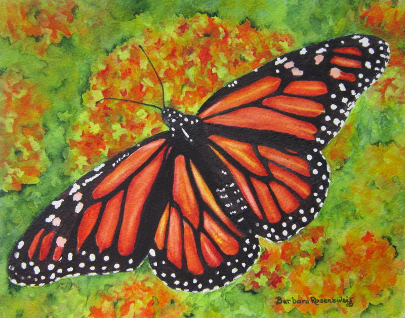 https://www.etsy.com/listing/154764254/monarch-butterfly-painting-art-print
