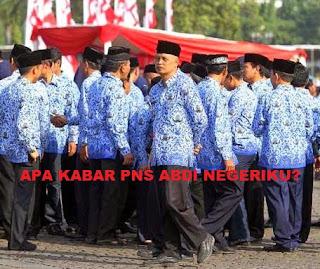 Info Rekrutmen CPNS, BKN Buka Peluang Seluruh Masyarakat Bisa Jadi PNS