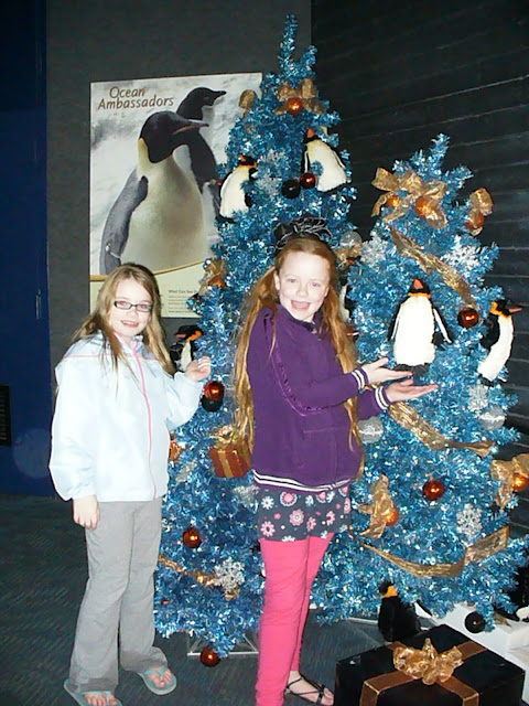 Penguin Christmas tree Sea World San Diego