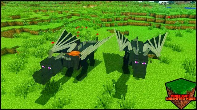 Dragon Mounts Mod en tierra