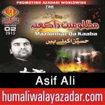 http://www.humaliwalayazadar.com/2015/10/asif-ali-nohay-2016.html