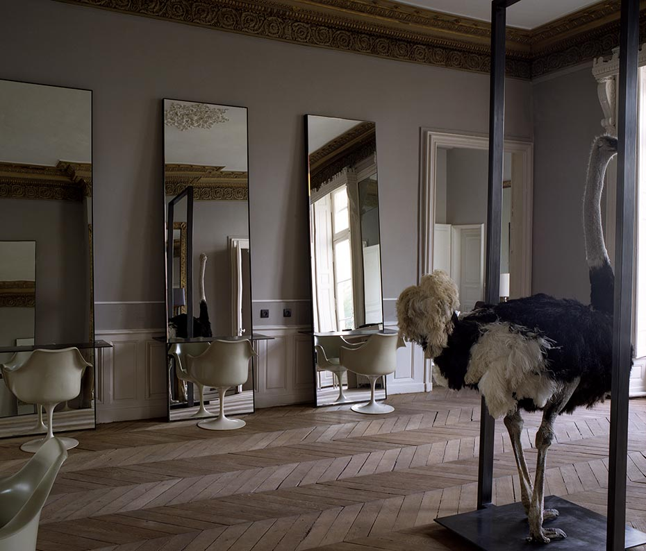 habitually chic the chicest hair salon