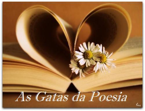 As gatas da poesia 9ºB