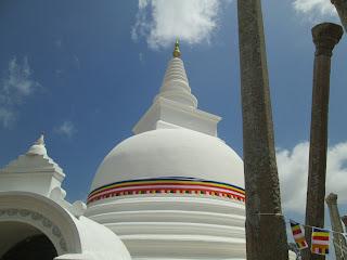 Thuparamya