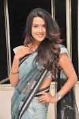 Jyothi seth sizzling saree photos-thumbnail-14