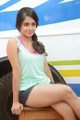 Sheena shahabadi sizzling pics-thumbnail-2