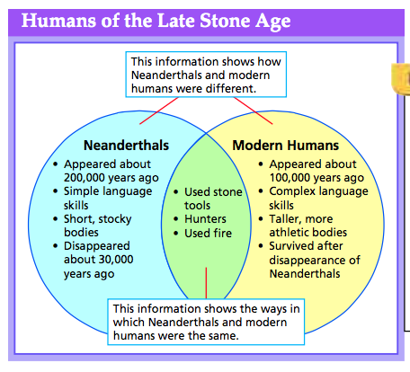 comparing and contrasting neanderthals and modern Compare and contrast homo sapien neanderthals and modern humans  the relationship between neanderthals and modern humans is they existed side by side for 10,000 years even though they are 2 different kind of species they would help each other out buried together in sites existed side by side for 10,000 years one survived.