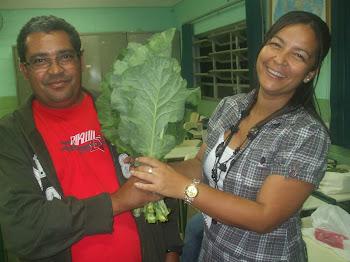 Couve cultivada na casa do Sr Jucenir- 30-09-11