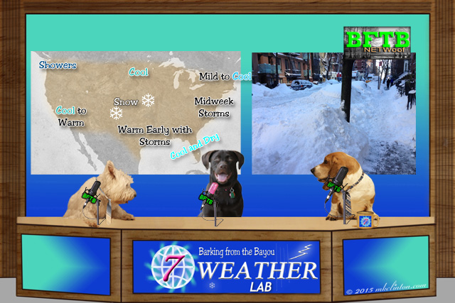 BFTB Weather desk with forecast map and NYC snow scene.