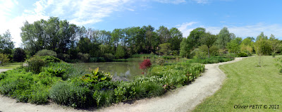 GELAUCOURT (54) - Jardin de l'Aubepré